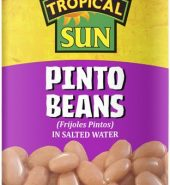 Tropical Sun Tinned Pinto Beans 400g